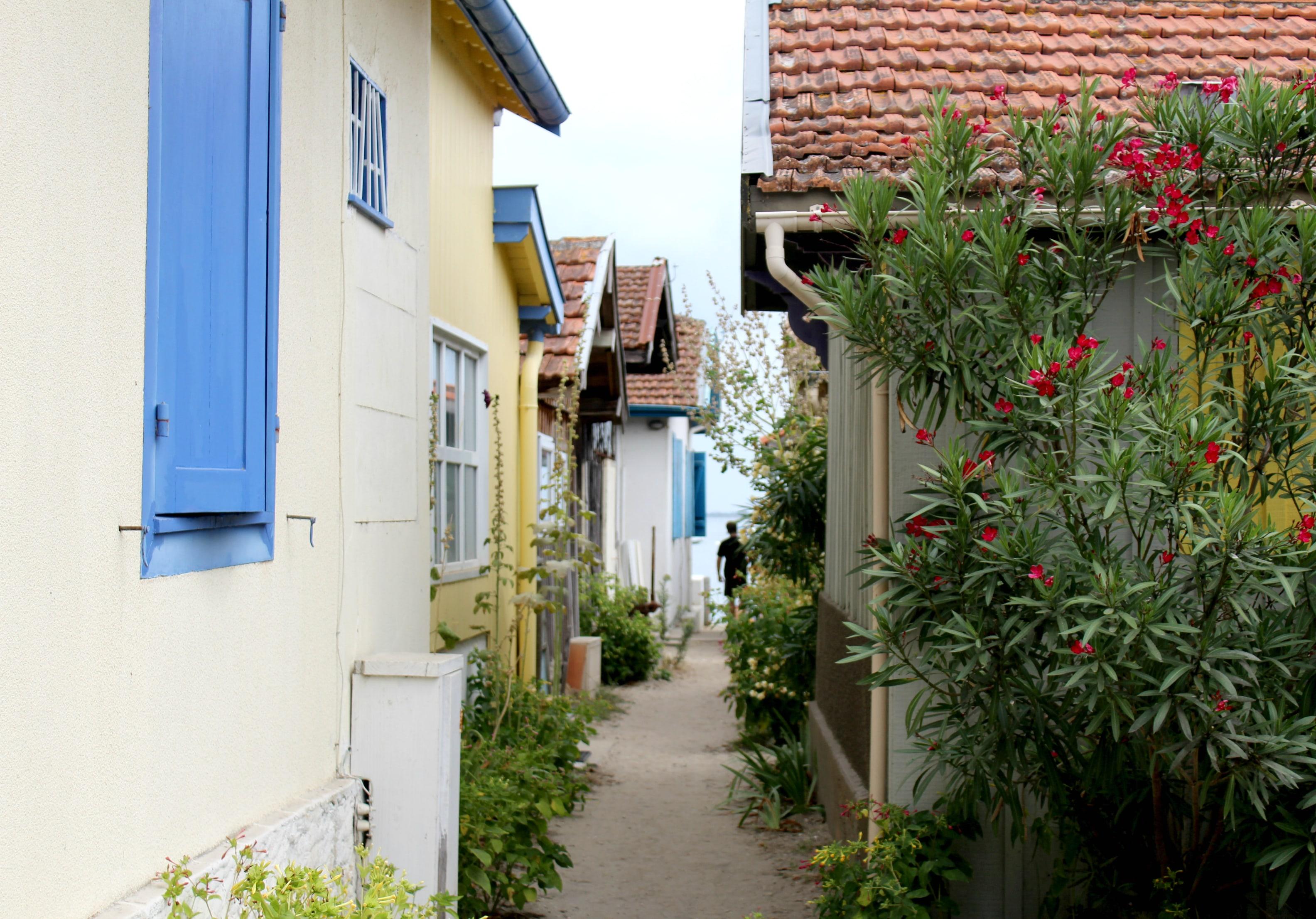 Cap Ferret - Village de l'herbe