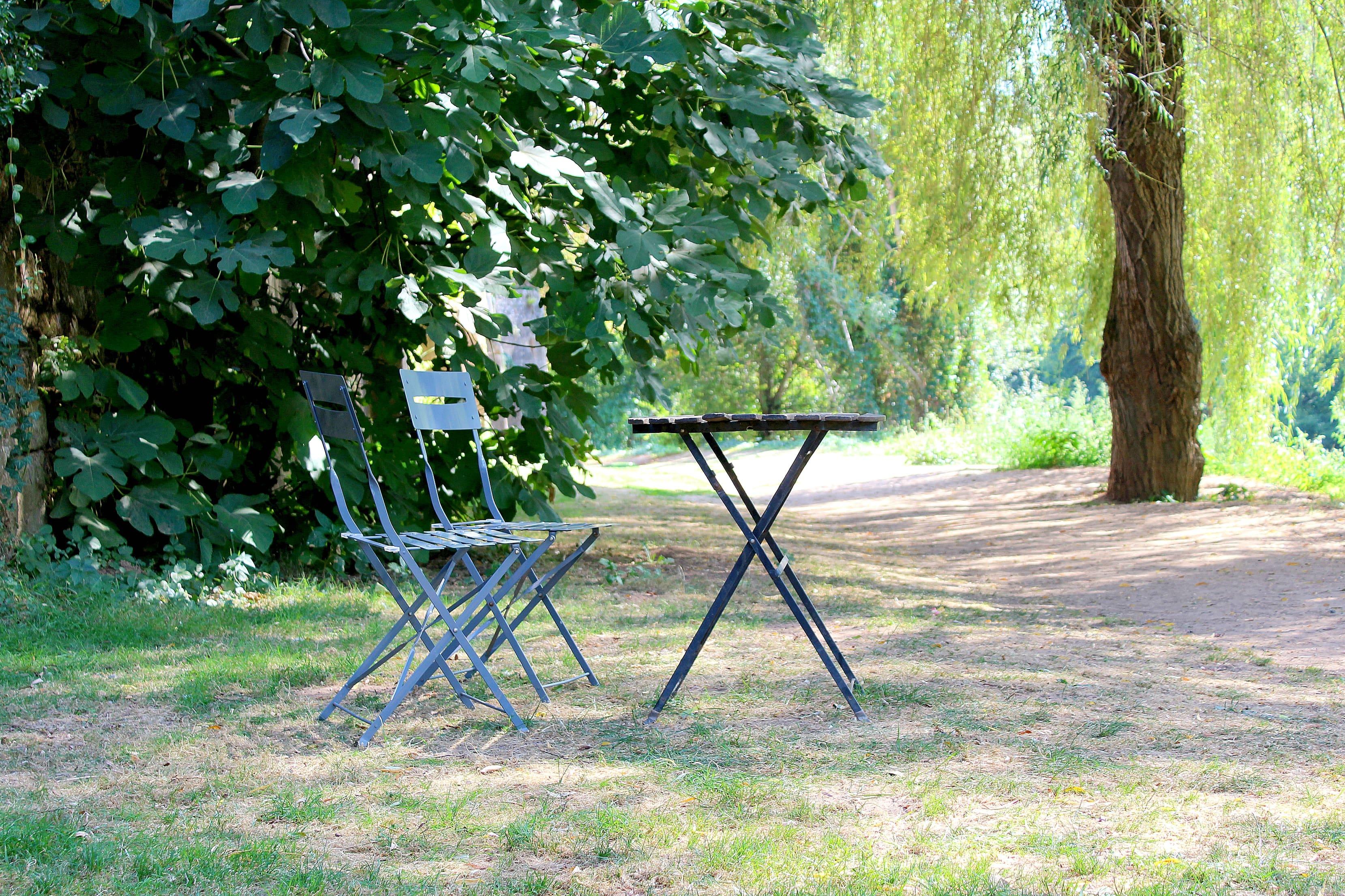 Le petit déjeuner sur l'herbe - saint léon sur vézère
