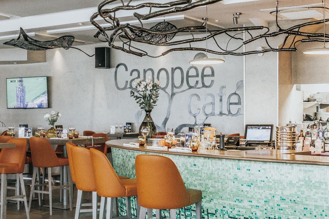 RESTAURANT CANOPÉE CAFÉ MÉRIGNAC BODEGA