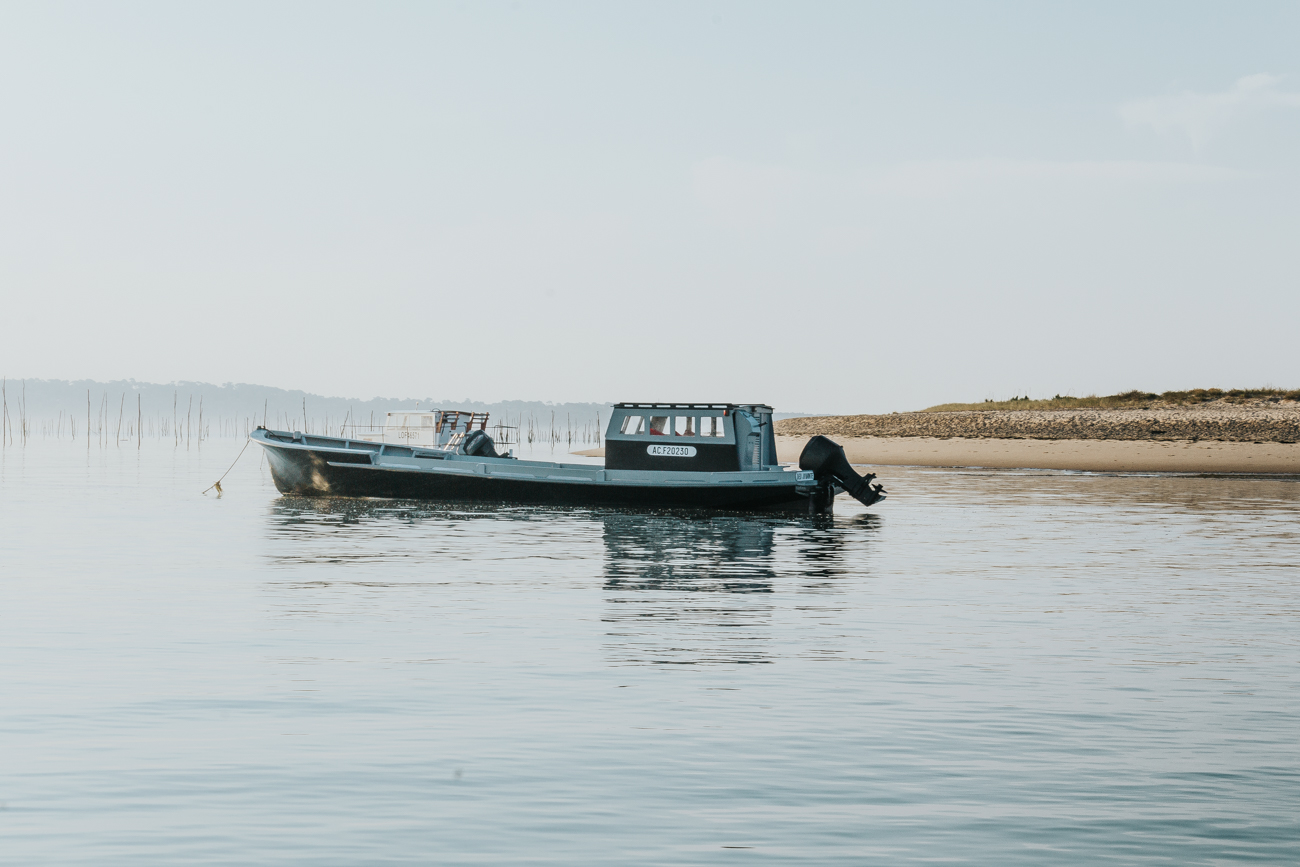 Cap Ferret, Bassin Arcachon, blog, île aux oiseaux, blog