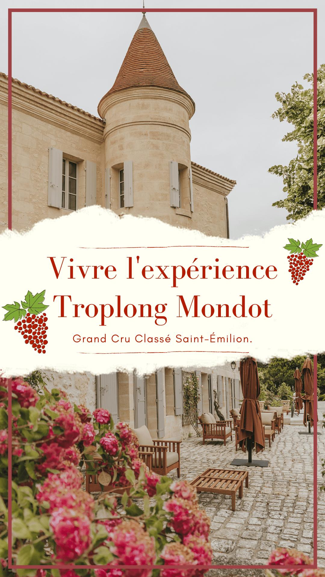 expérience troplong mondot, château, saint-émilion, grand cru classé, vignoble