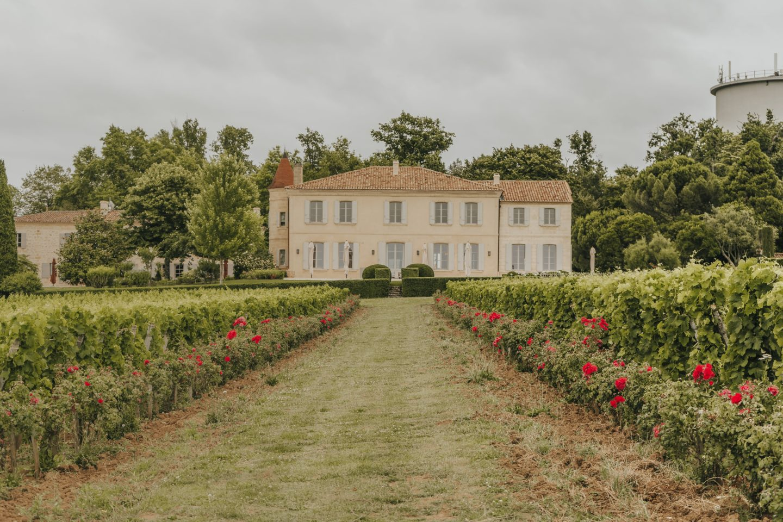 vue, château, troplong mondot, grand cru classé B, vignes